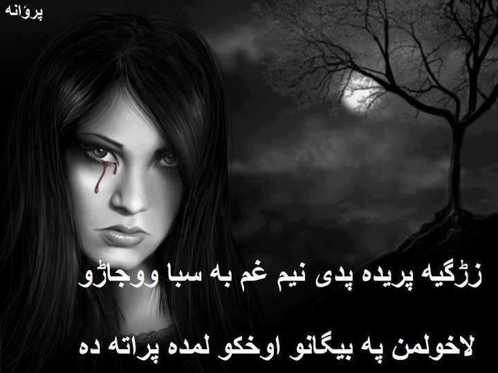 Pashto Poetry - Zargia Preda | Pakistan Social Web