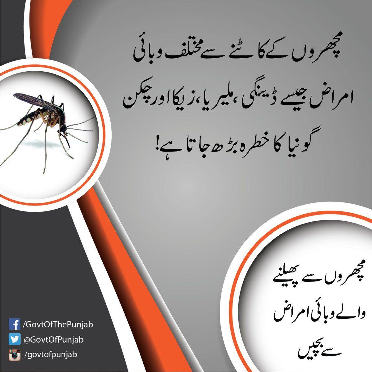 Enhanced precautions to avoid mosquito bites 1.