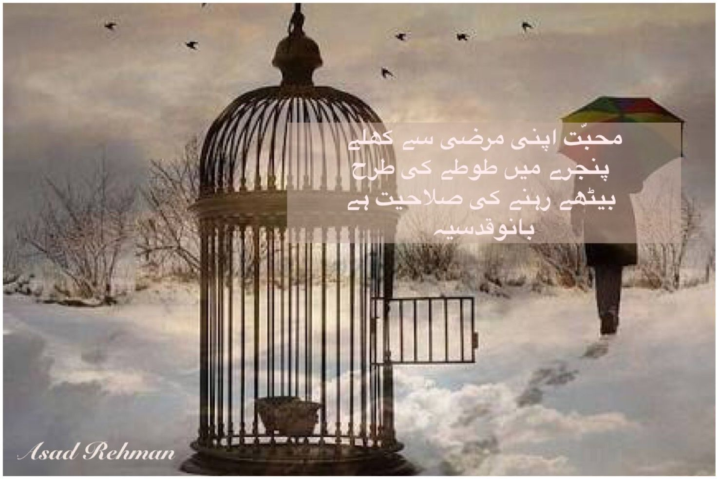 Bano qudsiya saying about mohabbat pakistan social web for Bano qudsia sayings