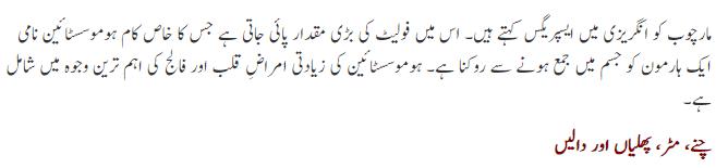 marchob-detail-urdu.