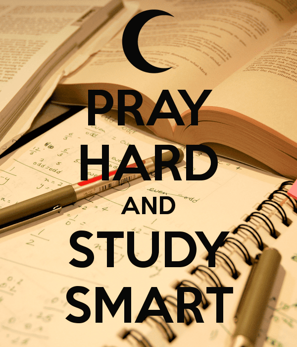 essay about study smart