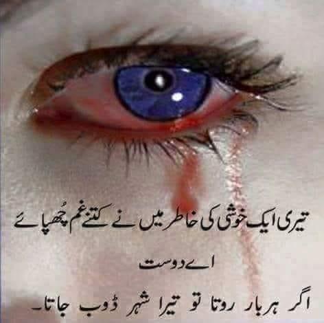 Teri aik khushi ki khatir (fb).